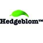 hedgeblom logotyp digital marknadsföring
